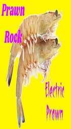 Electric Prawn Blort My Word Is Law mp3 Audio Track