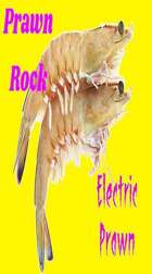 Electric Prawn Larry 3 mp3 Audio Track