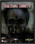 The Lost Paradise: Salvage Rights