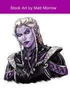Stock Art: Female Drow Aristocratic Warrior