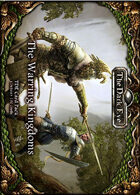 The Dark Eye - Warring Kingdoms Card Pack