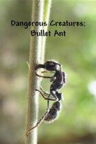 Dangerous Creatures:  Bullet Ant