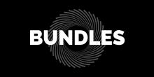 ZZ Bundles