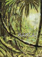 Banzai Action Cards