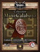 5E Mini-Calabozo #001: Camaras Enterradas del Consejo (Fantasy Grounds)
