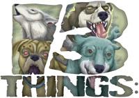 13 Things:
