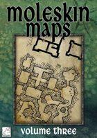Moleskin Maps 03
