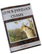 Grim & Perilous Chases - Supplement for Zweihander RPG