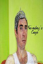 Faraday`s Cage