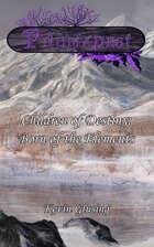 The Zen Chronicles Book 3 - Children of Destiny: Born of the Elements