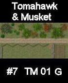 Dirt track #7 TOMAHAWK & MUSKET Series for Skirmish rules