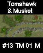 Stream #13 TOMAHAWK & MUSKET Series for Skirmish rules
