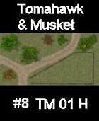 Dirt track #8 TOMAHAWK & MUSKET Series for Skirmish rules
