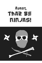 Ninja Character Sheet for Yarr Pirate RPG