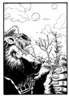 OE Stock Art - Bear Botanist