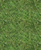 Grass Pattern for Gimp