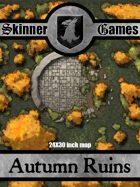 Skinner Games - Autumn Ruins