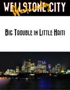 Wellstone City Wednesday - Big Trouble in Little Haiti