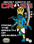 Secret Agents of CROSS Mission: From the Breath of Brahma