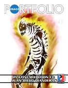 Image Portfolio Platinum Edition 13: Juan Diego DIanderas