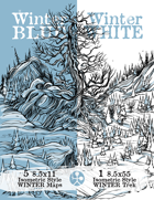 Winter Blue Winter White
