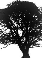 The Wisdom of Sylvasum