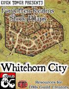 Whitehorn City - Forgotten Realms Stock Maps
