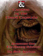 Caverns of the Chaos Crystals: The Missing Scholars