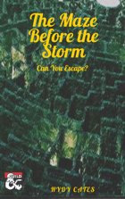 The Maze Before the Storm