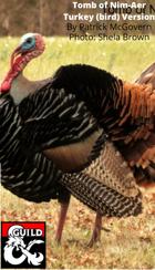 Turkey (bird) version of Tomb of Nim-Aer
