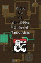 C1 Hidden Shrine of Tamoachan - Maps