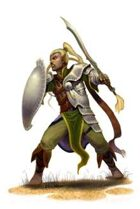 Eric Lofgren Presents: Male Elf Fighter