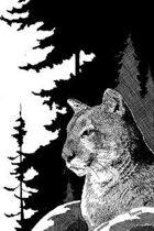 W Fraser Sandercombe Presents: Sentinel Cat