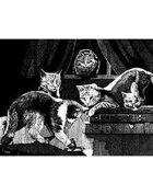 W Fraser Sandercombe Presents: Seer Cats