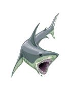Christina Stiles Presents: Shark by Jacob Blackmon