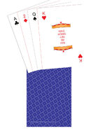 Poker Deck - TTC back - Blue