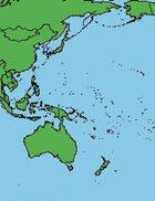 Shipwreck -Ship detail sheets 5 - the Pacific Rim