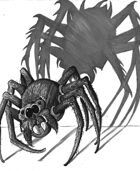 Weekly Beasties: Kind Spider