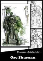 BlaszczecArt Stock Art: Orc Shaman