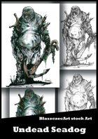 BlaszczecArt Stock Art: Undead Seadog