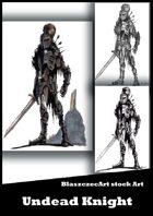 BlaszczecArt Stock Art: Undead Knight