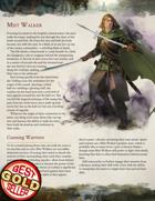 The Mist Walker - D&D 5e Class