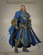 Fantasy Classes Series 1 - Paladin (M)