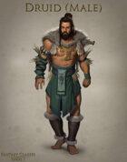 Fantasy Classes Series 1 - Druid (M)