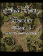 Critical Trails: Modular Forest 1