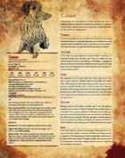 Canas PDF