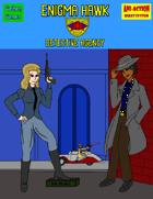 Enigma Hawk Detective Agency