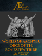 World of Aach'yn: Orcs of the Bonestew Tribe