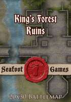 Seafoot Games - Kings Forest Ruins | 20x30 Battlemap