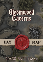 Seafoot Games - Gloomwood Caverns | 20x30 Battlemap